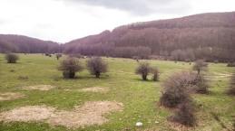 Monti-Picentini-07