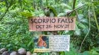 Scorpio-Falls-Siquijor-01
