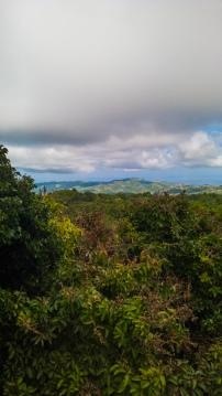 Mount-Bandilaan-11