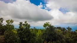 Mount-Bandilaan-13