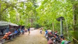Siquijor-Bandilaan-Forest-Ecosystem-02