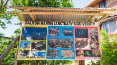 Siquijor-Paliton-Marine-Sanctuary-03