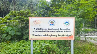Cambucad-Sagbang-Footbridge-01