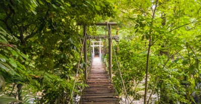 Forest-Camp-Negros-Oriental-01
