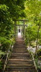 Forest-Camp-Negros-Oriental-02