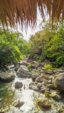 Forest-Camp-Negros-Oriental-11