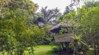 Forest-Camp-Negros-Oriental-13