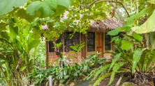 Forest-Camp-Negros-Oriental-14