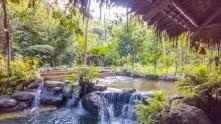 Forest-Camp-Negros-Oriental-17