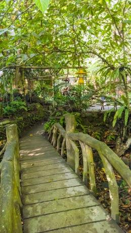 Forest-Camp-Negros-Oriental-21