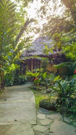 Forest-Camp-Negros-Oriental-22