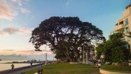 Rizal-Boulevard-03