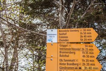Schelten-24