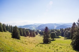 Chasseral 07