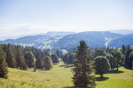 Chasseral 08