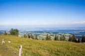 Chasseral 36