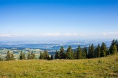Chasseral 37