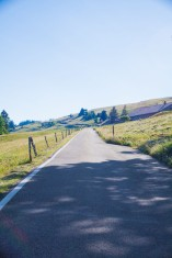 Chasseral 39