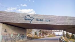 Feldberg 20