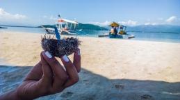 Manjuyod-Sand-Bar-Negros-Oriental-21