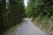 Col du Tronc 04