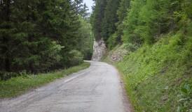 Col du Tronc 15