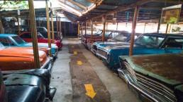 Bohol Vintage Cars 04