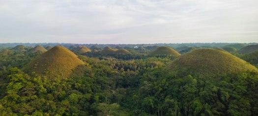 Blick vom Chocolate Hills Complex ueber die Chocolate Hills auf der Insel Bohol.