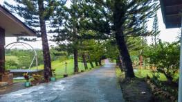 Sagbayan Peak Bohol 06