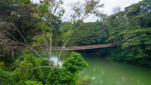 Sipatan Hanging Bridge 03