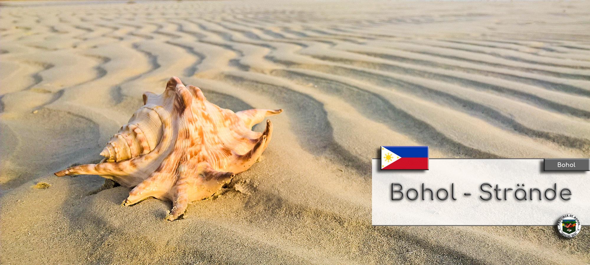 Sandstrand auf der Insel Bohol. Vorne links ist eine schoene Muschel.
