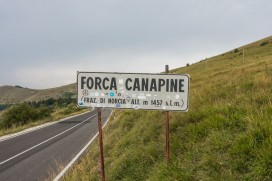 Forca Canapine 41