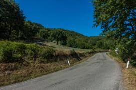 Valico Pantani 06