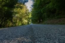 Valico Pantani 37