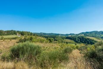 Monte Castellaccio 36