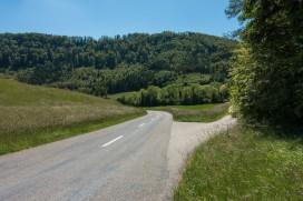 Rotberg 04