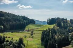 Kaltenbach 11