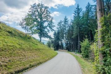 Kaltenbach 17